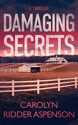 Damaging Secrets